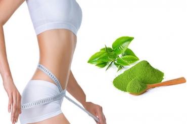 Giảm cân bằng bột trà xanh hiệu quả 100%