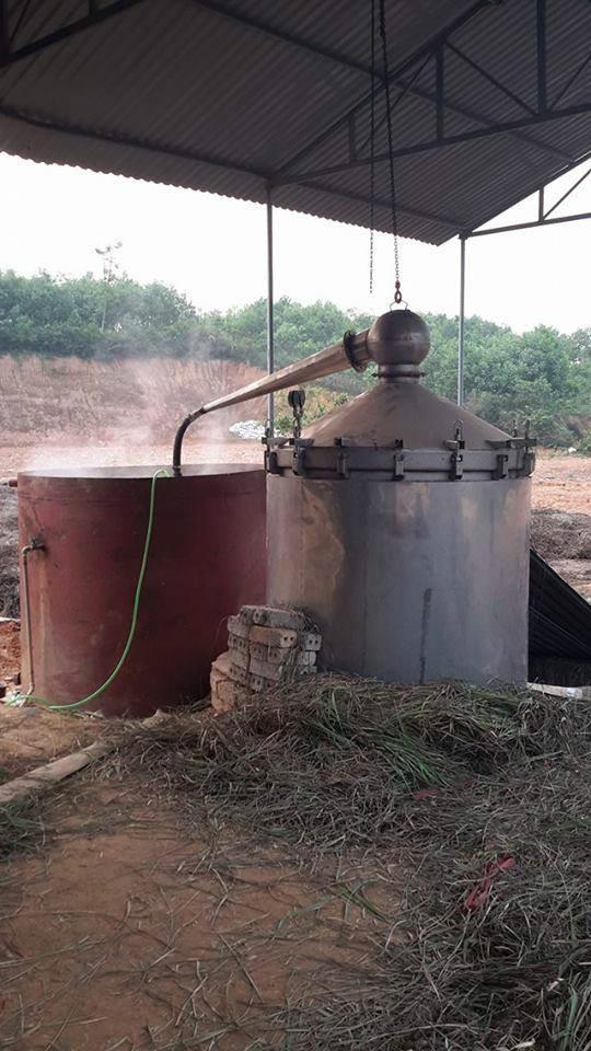 Tinh dầu sả nguyên chất 100ml