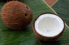 Dầu dừa nguyên chất truyền thống